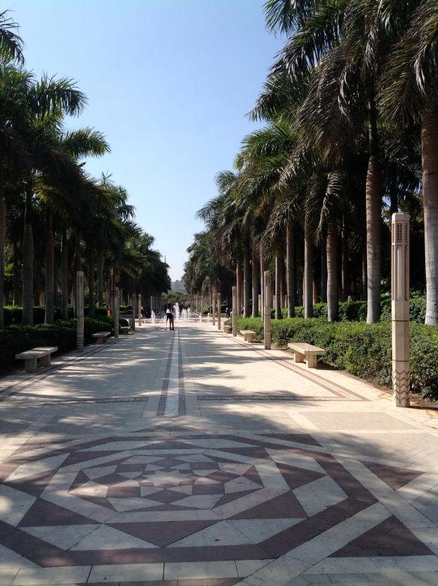 Al-Azhar avenue palms