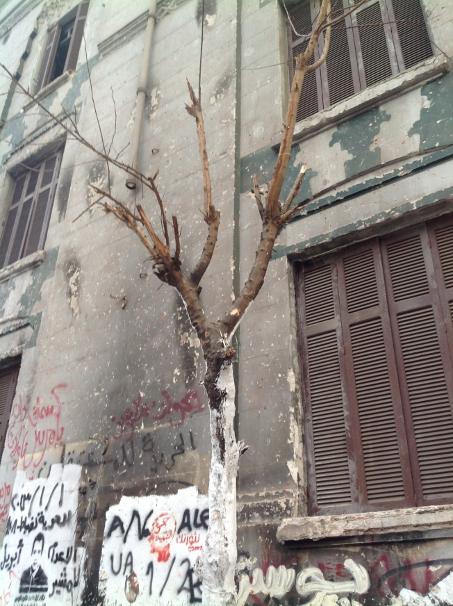 Mohd. Mahmoud Street