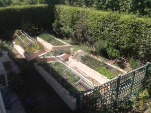 View of raised beds duplicate 4.15 copy