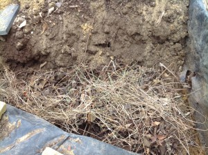 Dry rocket compost 2.16