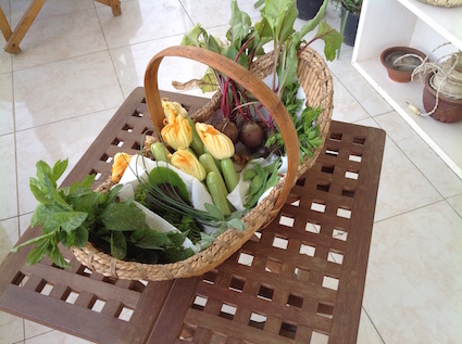 Garden produce 4.16