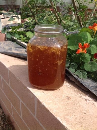 Honey harvest 4.16