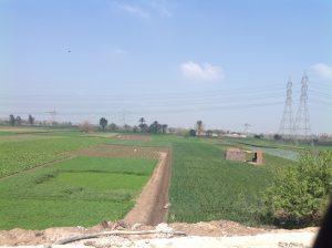 Farmland from Ring Road 2014