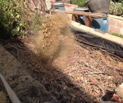 Shovelling the sand and soil back in