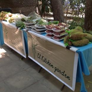 kitchen-garden-stall-9-16