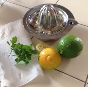 A more normal lemon for the lemonade