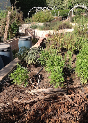 Raised beds and compost bins