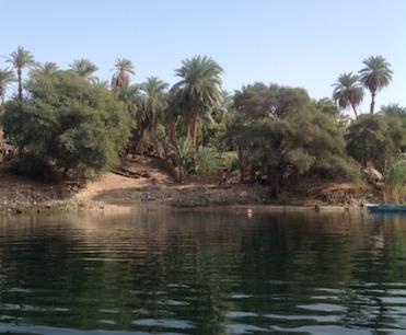 palms-aswan-3-16