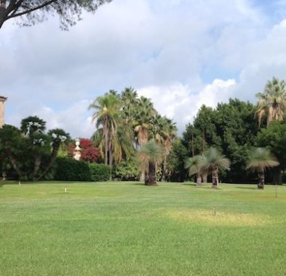 Villasmundo: wide vista with Xanthorrhoea
