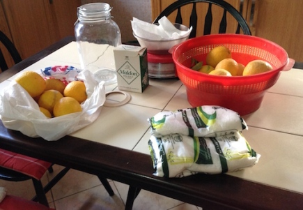 Preparing to preserve the fruit