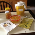 End products: marmalade and preserved lemons