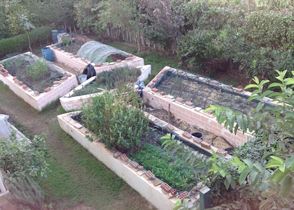 raised-beds-overview-11-16