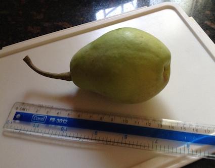 pear-1a