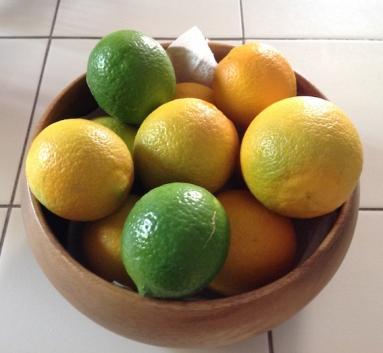 Lemon crop 10.17