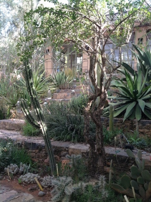 Steps to sunken garden
