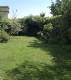 Garden overview 7.18