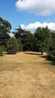 Kew Gardens 7.18 - 2