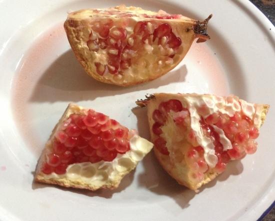 Pomegranate seeds 8.18