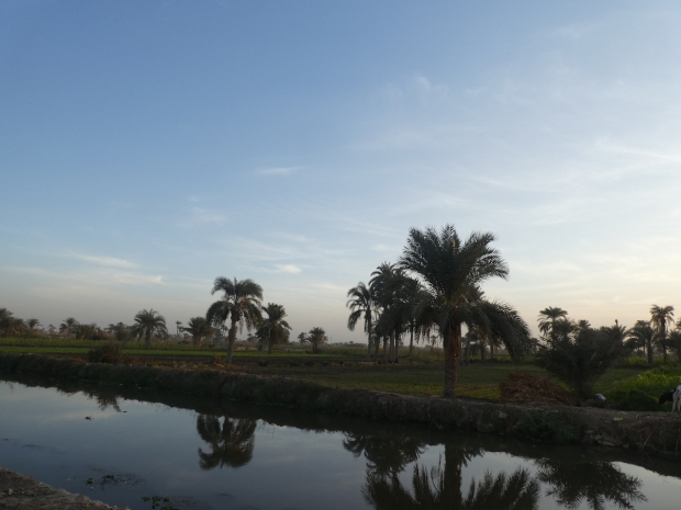 Dusk by the irrigation canal